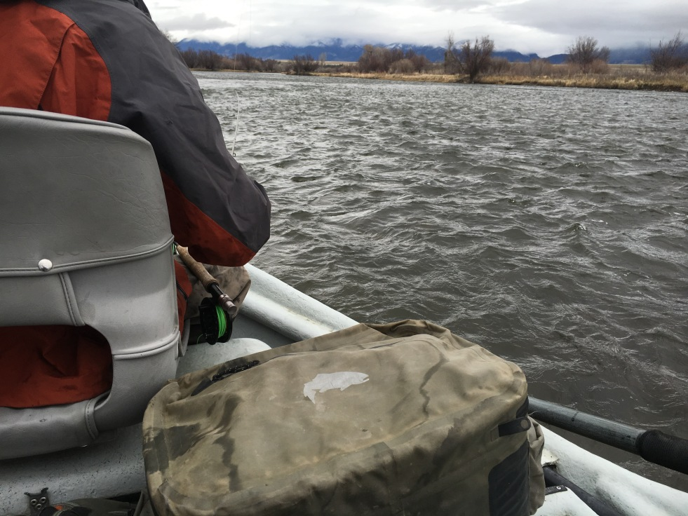 Madison River Float