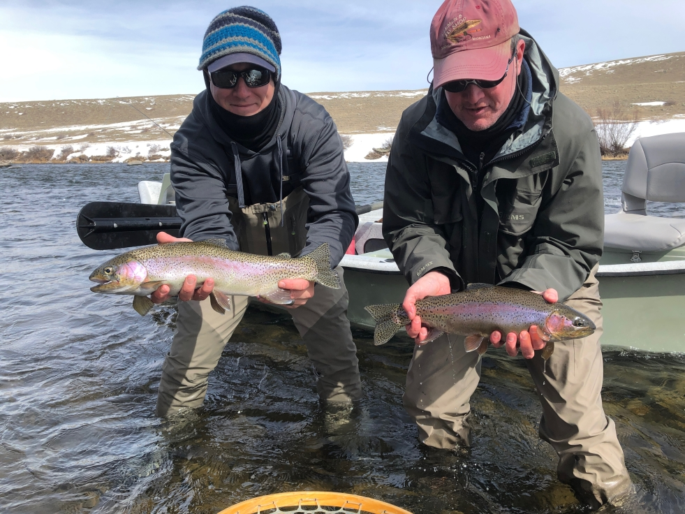 Double Rainbow trout caught on a recent t guide trip on the Madison River with Montana Fish Man Outfitting Near Ennis, Montana.