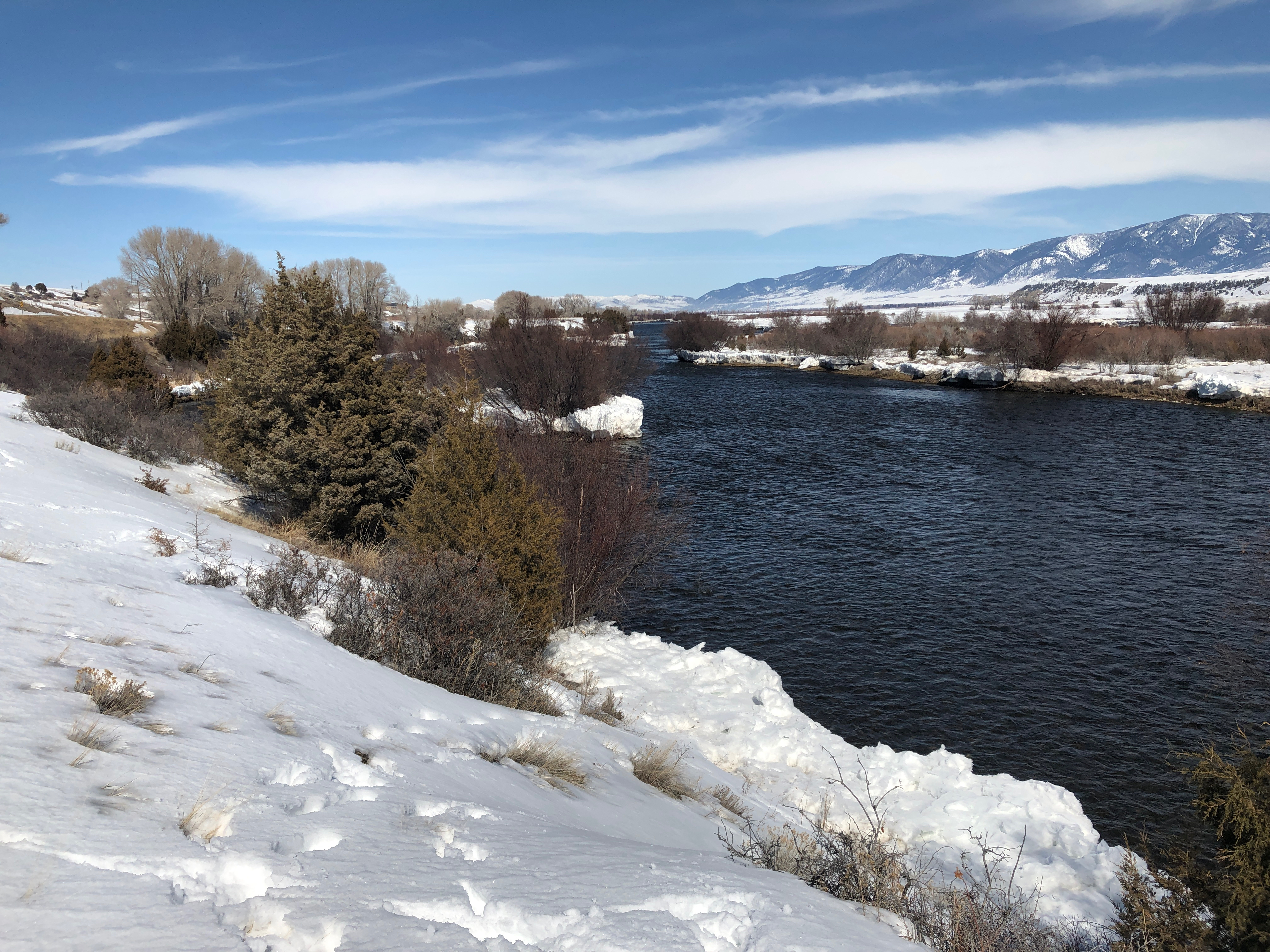 Looking north from Burnt Tree Hole FAS on the Madison River near Ennis, Montana.